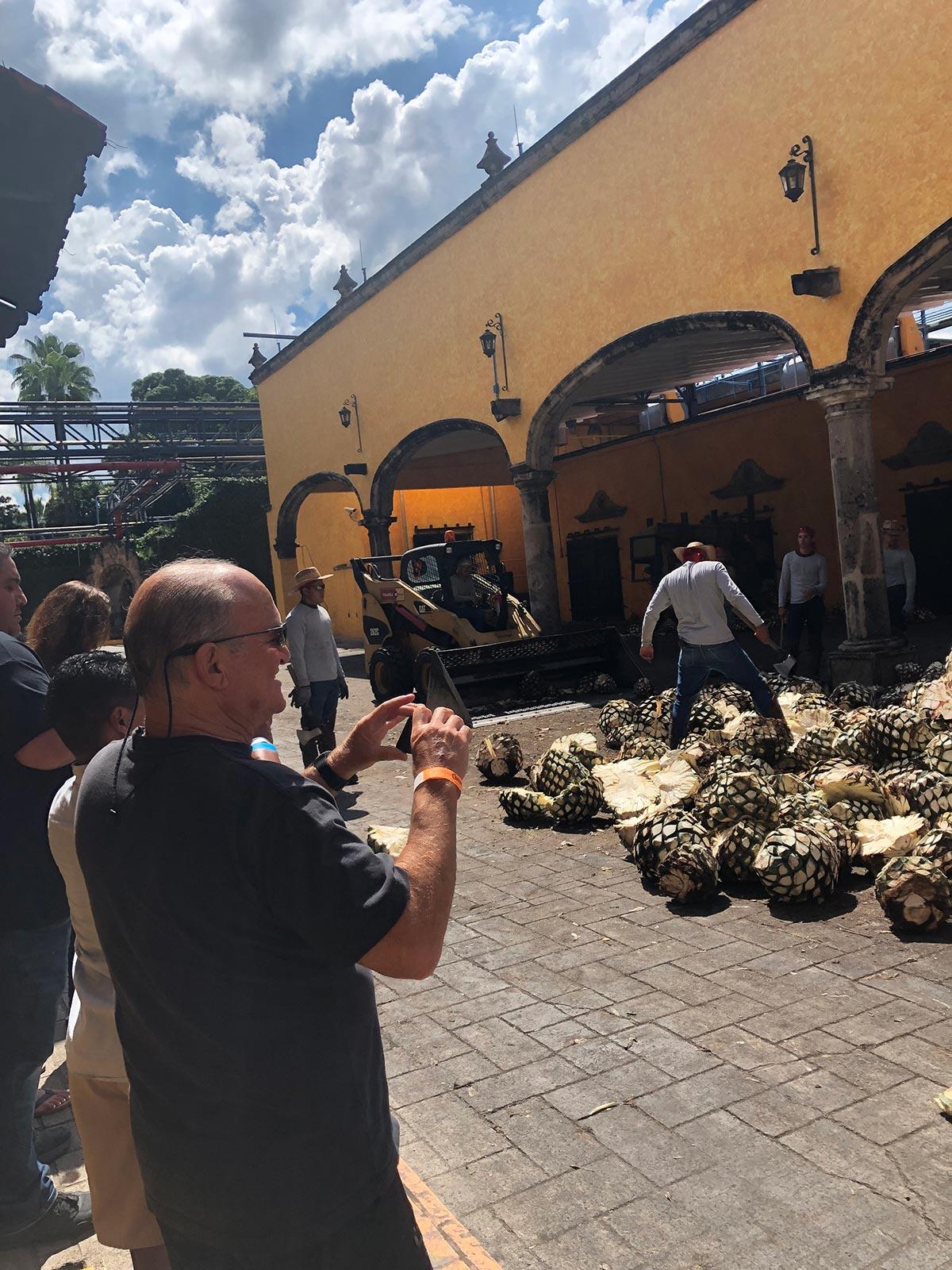Tequila jalisco & Ixtlan del Río - My Tour Vallarta